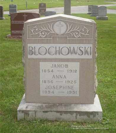 BLOCHOWSKI, ANNA - Lucas County, Ohio | ANNA BLOCHOWSKI - Ohio Gravestone Photos