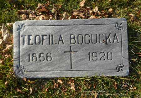 KOSCIELNY BOGUCKA, TEOFILA - Lucas County, Ohio | TEOFILA KOSCIELNY BOGUCKA - Ohio Gravestone Photos