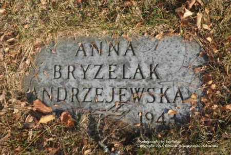 BOCIAN BRYZELAK ANDRZEJEWSKA, ANNA - Lucas County, Ohio | ANNA BOCIAN BRYZELAK ANDRZEJEWSKA - Ohio Gravestone Photos