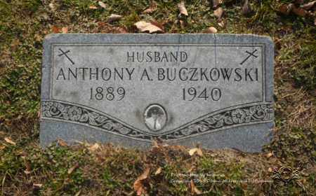 BUCZKOWSKI, ANTHONY - Lucas County, Ohio | ANTHONY BUCZKOWSKI - Ohio Gravestone Photos