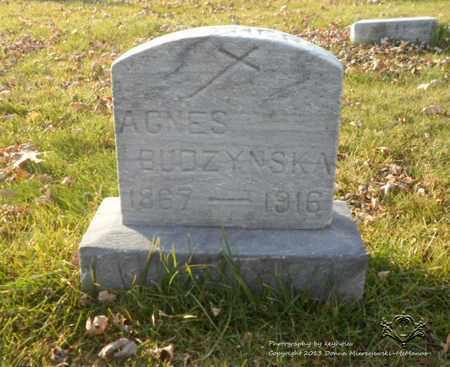 BUDZYNSKA, AGNES - Lucas County, Ohio | AGNES BUDZYNSKA - Ohio Gravestone Photos