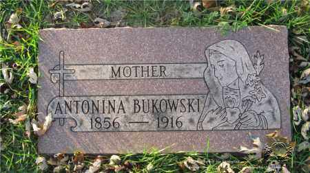 BUKOWSKI, ANTONINA - Lucas County, Ohio | ANTONINA BUKOWSKI - Ohio Gravestone Photos