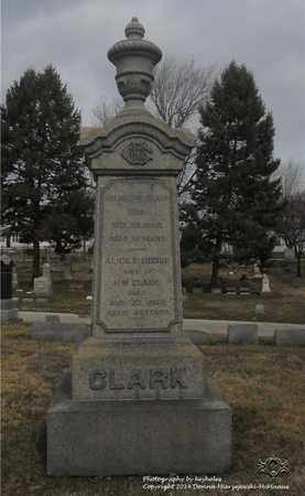 CLARK, ALICE E. - Lucas County, Ohio | ALICE E. CLARK - Ohio Gravestone Photos