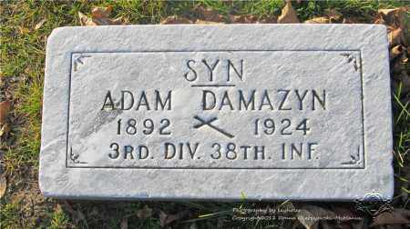 DAMAZYN, ADAM - Lucas County, Ohio | ADAM DAMAZYN - Ohio Gravestone Photos