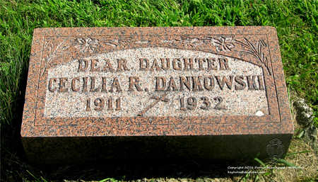 DANKOWSKI, CECILIA R. - Lucas County, Ohio | CECILIA R. DANKOWSKI - Ohio Gravestone Photos