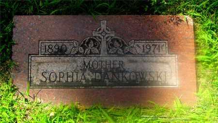 DANKOWSKI, SOPHIA - Lucas County, Ohio | SOPHIA DANKOWSKI - Ohio Gravestone Photos