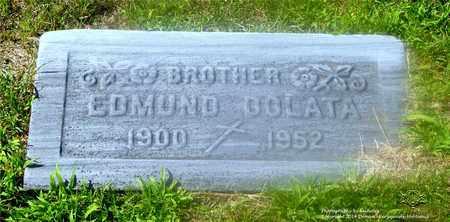DOLATA, EDMUND - Lucas County, Ohio | EDMUND DOLATA - Ohio Gravestone Photos