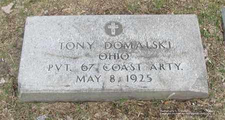DOMALSKI, TONY - Lucas County, Ohio | TONY DOMALSKI - Ohio Gravestone Photos