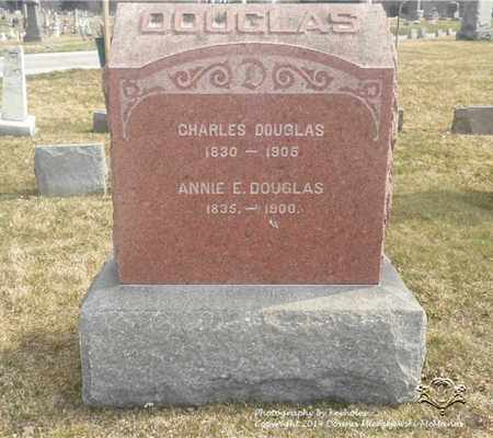 DOUGLAS, ANNIE E. - Lucas County, Ohio | ANNIE E. DOUGLAS - Ohio Gravestone Photos