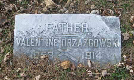 DRZAZGOWSKI, VALENTINE - Lucas County, Ohio | VALENTINE DRZAZGOWSKI - Ohio Gravestone Photos