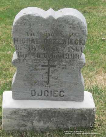 DRZEWIECKI, MICHAL - Lucas County, Ohio | MICHAL DRZEWIECKI - Ohio Gravestone Photos