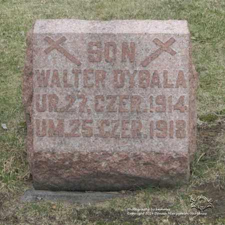 DYBALA, WALTER - Lucas County, Ohio | WALTER DYBALA - Ohio Gravestone Photos