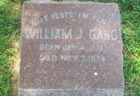 GANG, WILLIAM J. - Lucas County, Ohio | WILLIAM J. GANG - Ohio Gravestone Photos