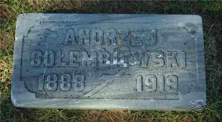 GOLEMBIEWSKI, ANDRZEJ - Lucas County, Ohio | ANDRZEJ GOLEMBIEWSKI - Ohio Gravestone Photos