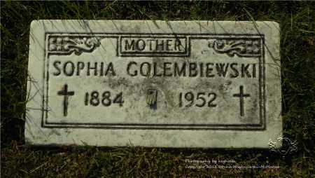GOLEMBIEWSKI, SOPHIA - Lucas County, Ohio | SOPHIA GOLEMBIEWSKI - Ohio Gravestone Photos