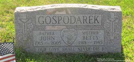 GOSPODAREK, JOHN - Lucas County, Ohio | JOHN GOSPODAREK - Ohio Gravestone Photos