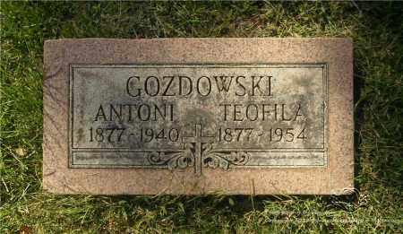 GOZDOWSKI, TEOFILA - Lucas County, Ohio | TEOFILA GOZDOWSKI - Ohio Gravestone Photos
