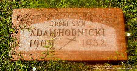 HODNICKI, ADAM - Lucas County, Ohio | ADAM HODNICKI - Ohio Gravestone Photos