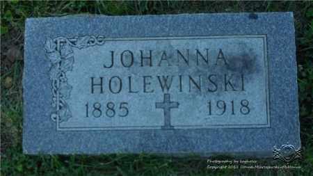 HOLEWINSKI, JOHANNA - Lucas County, Ohio | JOHANNA HOLEWINSKI - Ohio Gravestone Photos