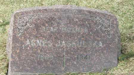 LEWANDOWSKI JASKULSKA, AGNES - Lucas County, Ohio | AGNES LEWANDOWSKI JASKULSKA - Ohio Gravestone Photos
