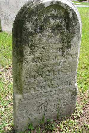 JENKENS, SUSAN J - Lucas County, Ohio | SUSAN J JENKENS - Ohio Gravestone Photos