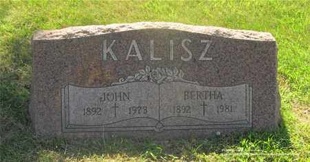 KALISZ, BERTHA - Lucas County, Ohio | BERTHA KALISZ - Ohio Gravestone Photos