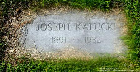 KALUCKI, JOSEPH - Lucas County, Ohio | JOSEPH KALUCKI - Ohio Gravestone Photos
