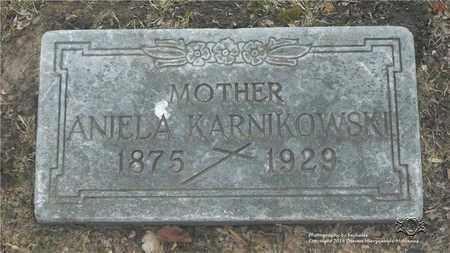 HUDZINSKI KANIKOWSKI, ANIELA - Lucas County, Ohio | ANIELA HUDZINSKI KANIKOWSKI - Ohio Gravestone Photos
