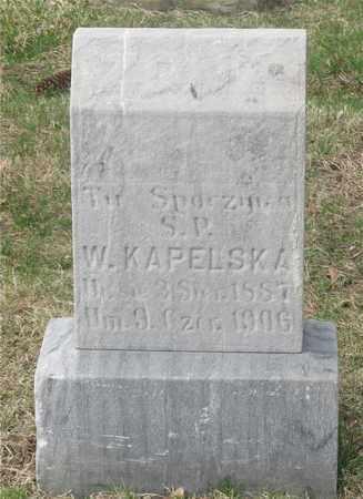 KAPELSKA, WLADYSLAWA - Lucas County, Ohio | WLADYSLAWA KAPELSKA - Ohio Gravestone Photos