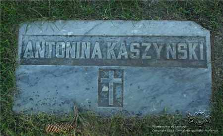 MATEJA KASZYNSKI, ANTONINA - Lucas County, Ohio | ANTONINA MATEJA KASZYNSKI - Ohio Gravestone Photos