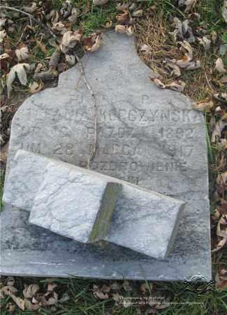 CZERWINSKI KORCZYNSKA, STEFANIA - Lucas County, Ohio | STEFANIA CZERWINSKI KORCZYNSKA - Ohio Gravestone Photos
