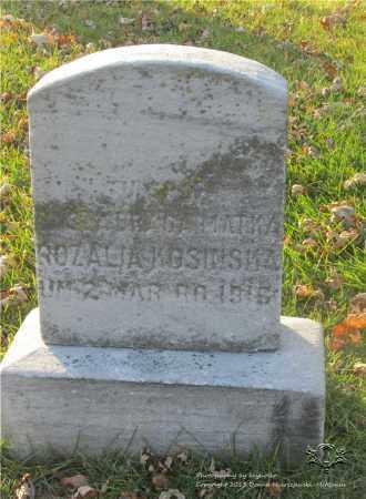 NAWROCKI KOSINSKA, ROZALIA - Lucas County, Ohio | ROZALIA NAWROCKI KOSINSKA - Ohio Gravestone Photos