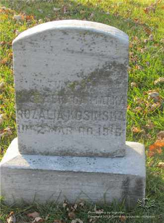 KOSINSKA, ROZALIA - Lucas County, Ohio | ROZALIA KOSINSKA - Ohio Gravestone Photos