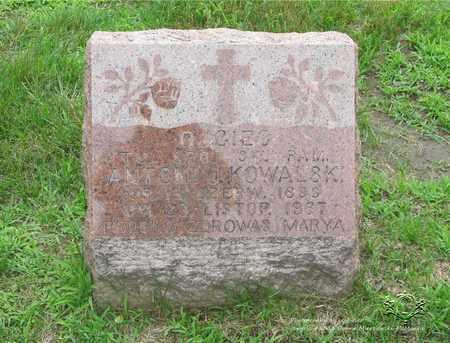 KOWALSKI, ANTONI J. - Lucas County, Ohio | ANTONI J. KOWALSKI - Ohio Gravestone Photos