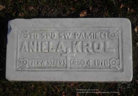 KROL, ANIELA - Lucas County, Ohio | ANIELA KROL - Ohio Gravestone Photos
