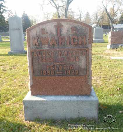 KWAPICH BUCZKOWSKI, PELAGIA - Lucas County, Ohio | PELAGIA KWAPICH BUCZKOWSKI - Ohio Gravestone Photos