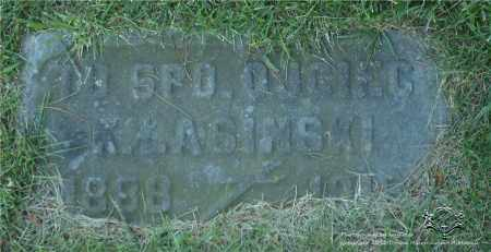 LASINSKI, K. - Lucas County, Ohio | K. LASINSKI - Ohio Gravestone Photos