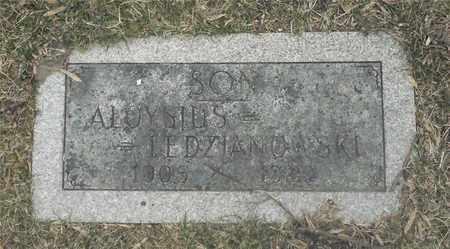 LEDZIANOWSKI, ALOYSIUS - Lucas County, Ohio | ALOYSIUS LEDZIANOWSKI - Ohio Gravestone Photos