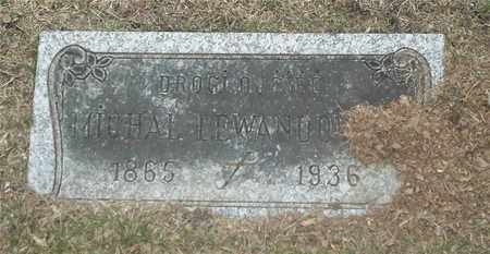 LEWANDOWSKI, MICHAL - Lucas County, Ohio | MICHAL LEWANDOWSKI - Ohio Gravestone Photos