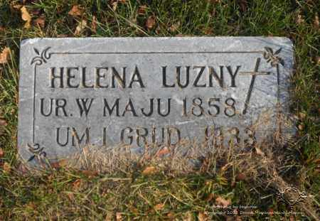 PURCELEWSKI LUZNY, HELENA - Lucas County, Ohio | HELENA PURCELEWSKI LUZNY - Ohio Gravestone Photos