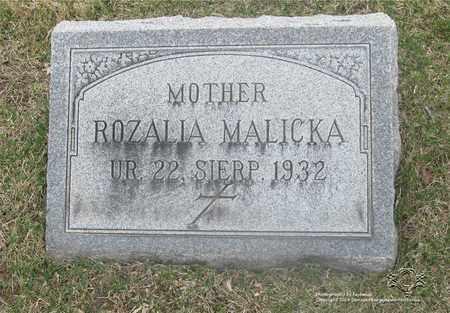 MALICKA, ROZALIA - Lucas County, Ohio | ROZALIA MALICKA - Ohio Gravestone Photos