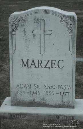 MARZEC, ADAM - Lucas County, Ohio | ADAM MARZEC - Ohio Gravestone Photos