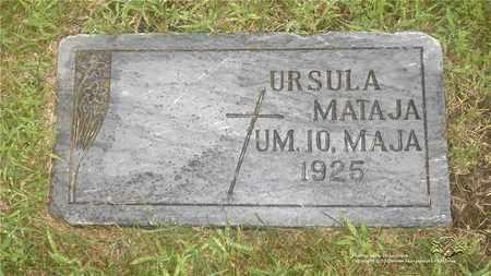 MATEJA, URSULA - Lucas County, Ohio | URSULA MATEJA - Ohio Gravestone Photos