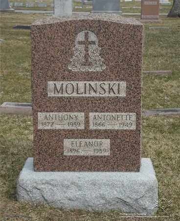 MOLINSKI, ANTHONY - Lucas County, Ohio | ANTHONY MOLINSKI - Ohio Gravestone Photos
