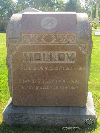 MOLLOY, MARY - Lucas County, Ohio | MARY MOLLOY - Ohio Gravestone Photos