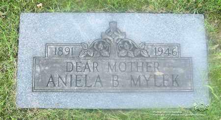 MIZDRAK MYLEK, ANIELA B. - Lucas County, Ohio | ANIELA B. MIZDRAK MYLEK - Ohio Gravestone Photos