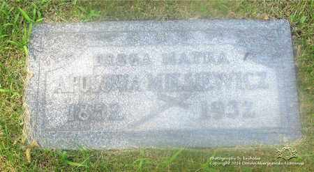 MYSIEWICZ, APOLONIA - Lucas County, Ohio | APOLONIA MYSIEWICZ - Ohio Gravestone Photos
