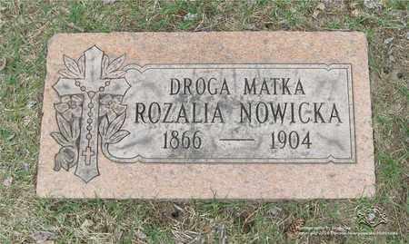 NOWICKA, ROZALIA - Lucas County, Ohio | ROZALIA NOWICKA - Ohio Gravestone Photos