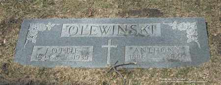 KOTLEWSKI OLEWINSKI, LOTTIE - Lucas County, Ohio | LOTTIE KOTLEWSKI OLEWINSKI - Ohio Gravestone Photos