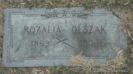 FRASZEWSKI OLSZAK, ROZALIA - Lucas County, Ohio | ROZALIA FRASZEWSKI OLSZAK - Ohio Gravestone Photos